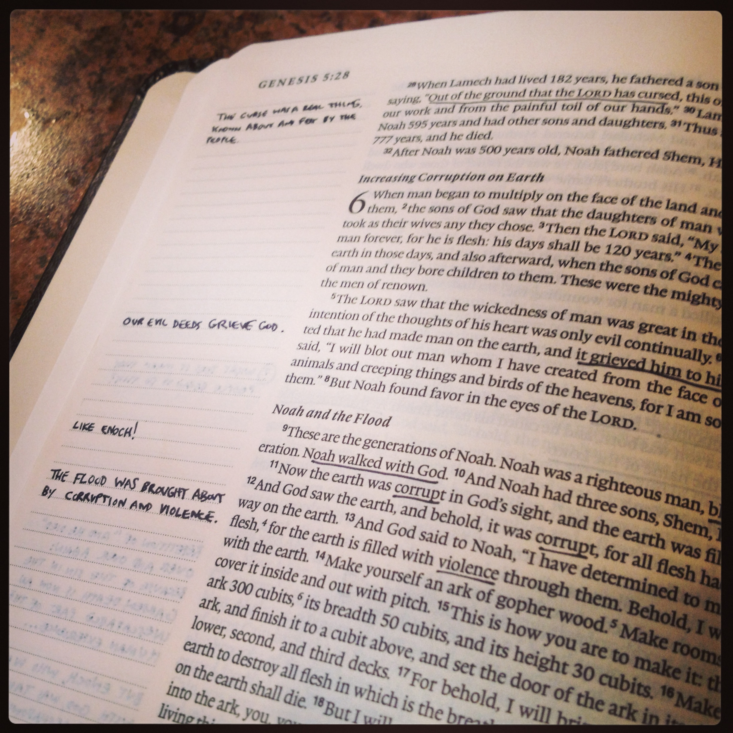 Product Review: ESV Single Column Journaling Bible   The Doc