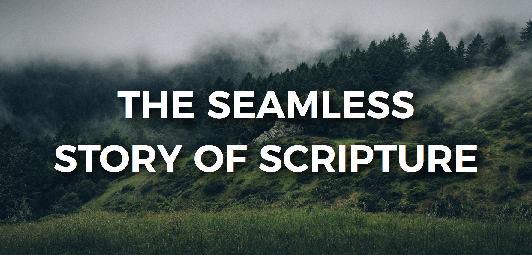 Seamless Story of Scripture
